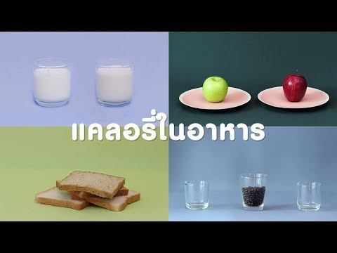 ปริมาณแคลอรี่ในอาหาร EP 2