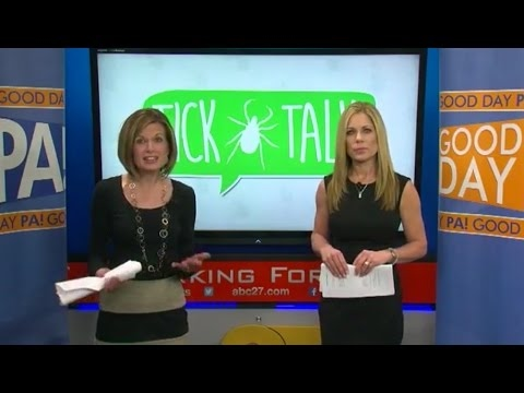 """Tick Talk,"" a special Good Day PA episode - ABC 03-03-2017"