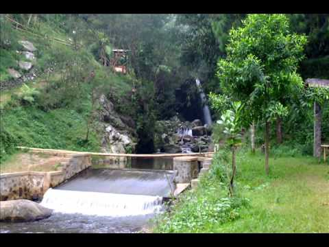 Lagu Daerah Papua ,Taman Bunga -Rio Grime