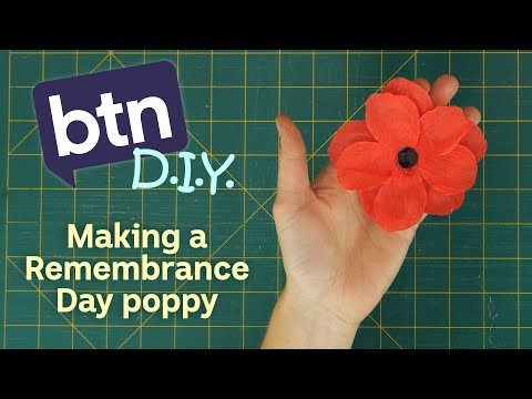 Making a Remembrance Day Poppy - BTN DIY