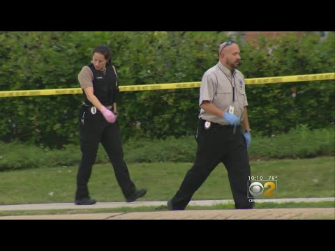 Man Shot Outside Schaumburg Walgreens