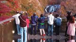 ドローン空撮【袋田の滝】紅葉の旅「茨城絶景」4K Drone Japan