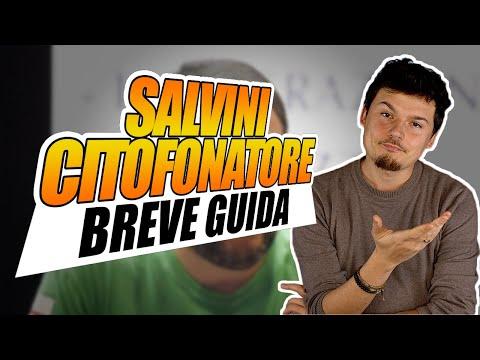 Breve guida al Salvini citofonatore