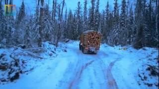 Лесовозы Сибири №2