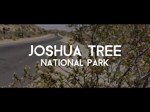 Auto Tour Through Joshua Tree National Park In California