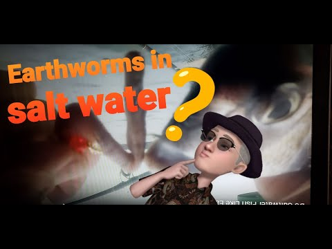 Do Saltwater Fish Like Earthworms ??? Low Budget Backup Bait !