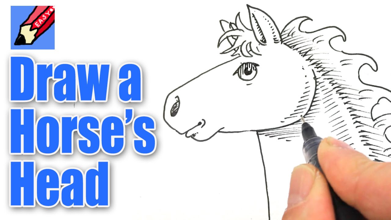 How To Draw A Horse S Head Real Easy Youtube