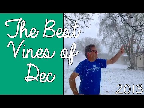 The BEST VINES of DECEMBER 2013!