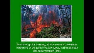 APES - Chapter 2 Environmental Systems