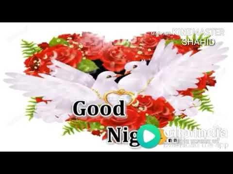 Good Night Beautiful Song Byshahid Hussain Youtube