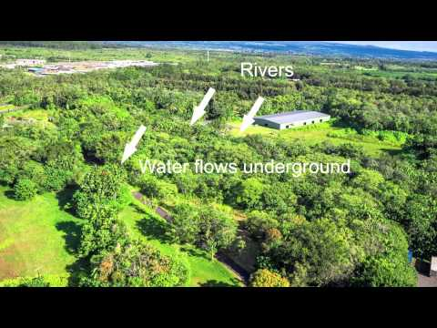 big-island-hawaii-land-for-sale.-keaau-properties-with-natural-artesian-water.-mls-264889-&-264890