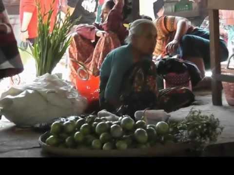 handling of live chicken in Thandwe market , west Myanmar