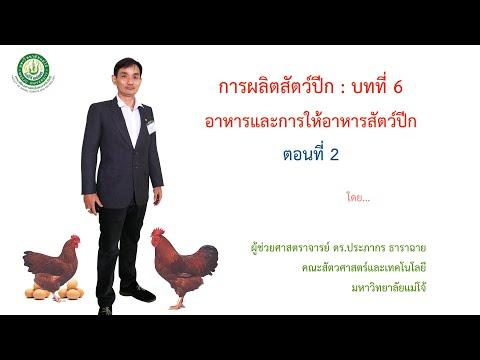 การผลิตสัตว์ปีก : อาหารและการให้อาหารสัตว์ปีก ตอนที่ 2