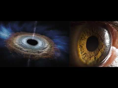 Black Holes Synthetic Telepathy Ego Aliens Underground Bases and Holographic Reality