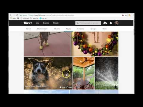 Flickr Tutorial - My Favorite Photo Storing And Sharing Site