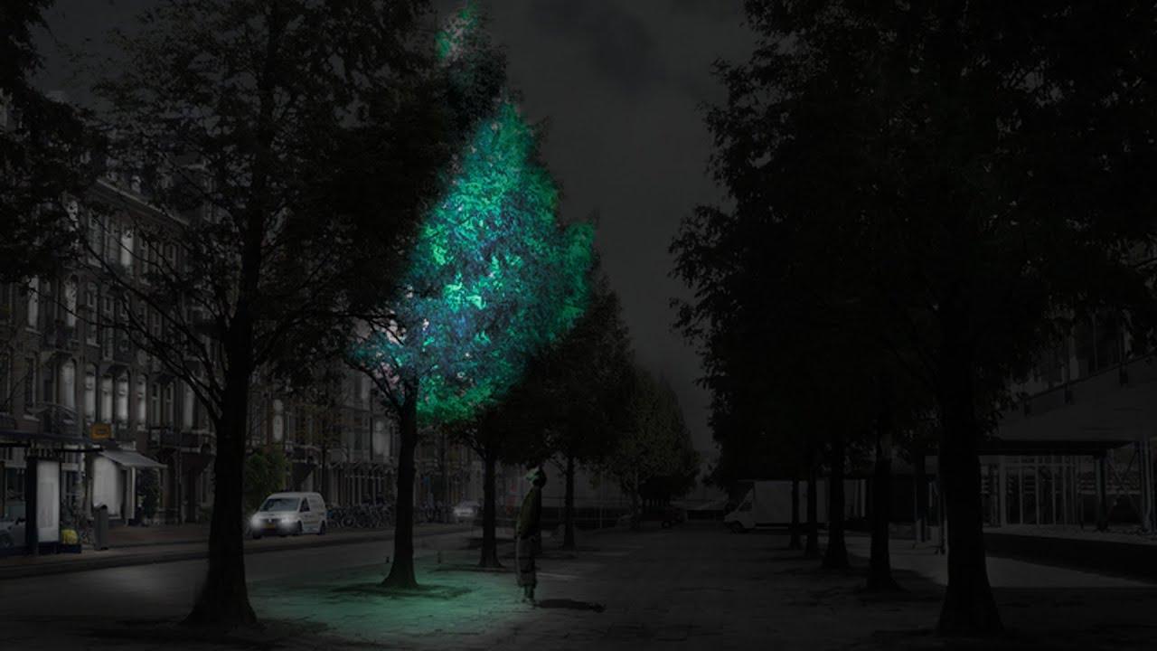 glow in the dark lighting. Glow-in-the-dark Trees Could Replace Street Lights Says Daan Roosegaarde -  YouTube Glow In The Dark Lighting