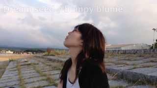 Dream seed Lyrics & Music by KAYO bumpy blume Vo.KAYO Gt.Eiichiro.