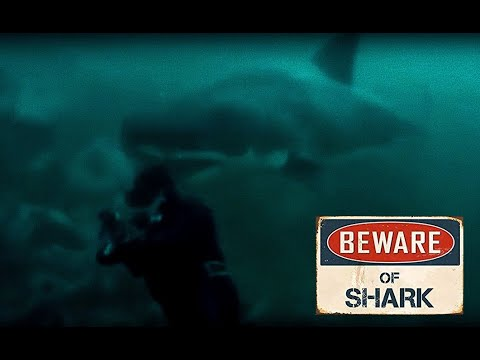 Abalone Diver Scary Encounter With Great White Shark