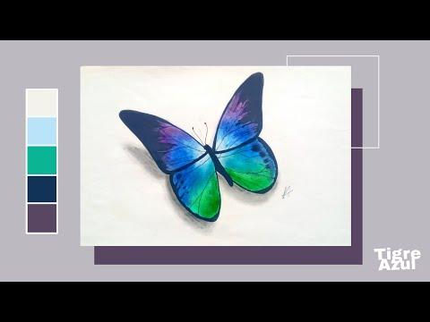 Cómo Dibujar Una Mariposa 1 Tigreazul Youtube