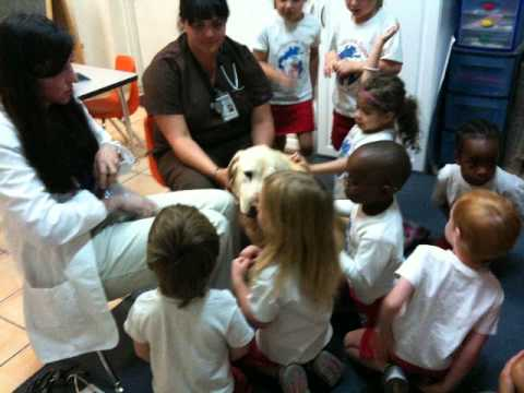 French PreSchool - Montage - International School of Tucson