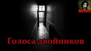 Истории на ночь - Голоса двойников