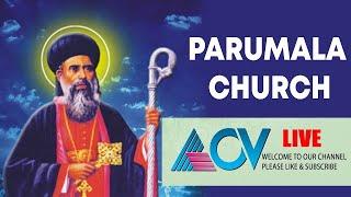 പരുമല സെമിനാരി വിശുദ്ധ കുർബാന തത്സമയ സംപ്രേഷണം   Parumala Church Sunday Service Live   ACV LIVE