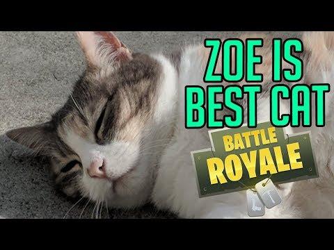 ZOE IS BEST CAT (Fortnite)