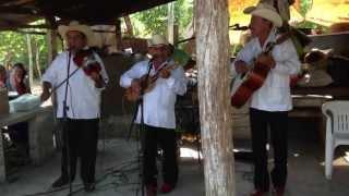 Trio Atardecer Huasteco (Atarjea, Gto) con Lázaro López (Violinista)