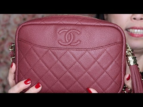 e6e10fa2b8ad Chanel Camera Case Bag First Impression - YouTube