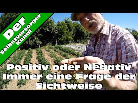 Positiv oder negativ Denker im Garten