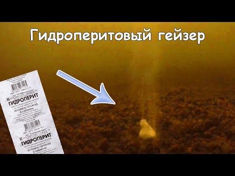 Не показывай это видео рыбакам 😱. Реакция рыбы на гидроперит,перекись водорода.