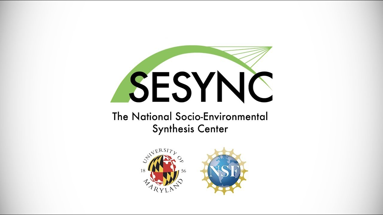 Image result for sesync