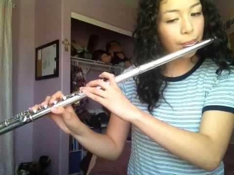 Heartbreak Girl  5 Seconds of Summer flute