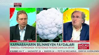 Prof. Saraçoğlu ile Sağlıklı Yaşam 06.05.2018