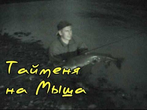 ночная ловля тайменя