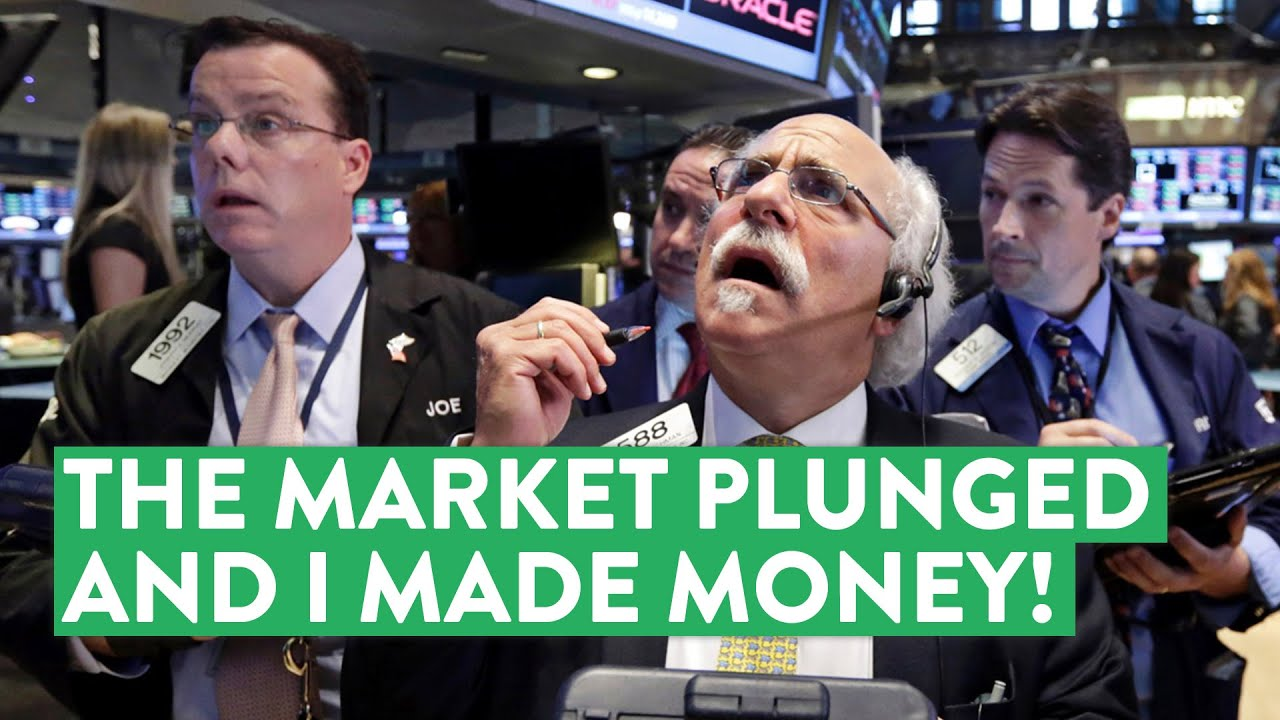 Stock Market Plunges | How I Capitalized and Made Money