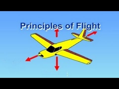 Flight Training Manual Lesson #1: Principles of Flight