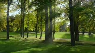 The Haven Country Club - You Dream Of A Place Where The Whole Family Has Fun