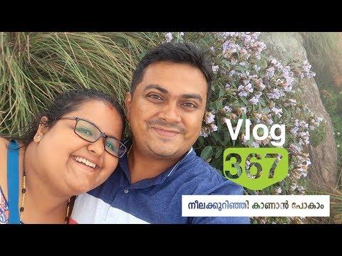 നീലക്കുറിഞ്ഞി കാണാൻ പോകാം - Neelakurinji in Munnar 2018 - Everything you wants to know Vlog 367
