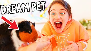 NAZ FINDS OUT SHE GETS A GUINEA PIG FOREVER w/the Norris Nuts
