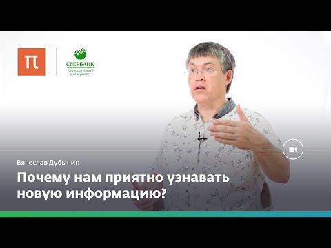 Мозг и любопытство — Вячеслав Дубынин