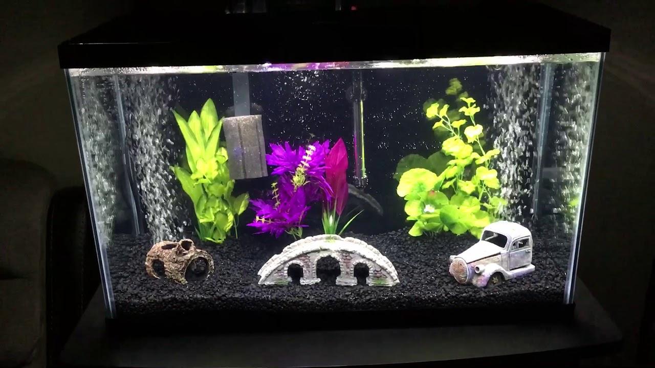 29 gallon Tetra aquarium kit review