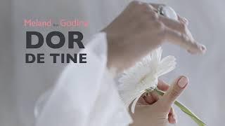 Dor de tine - MeĮand ❌ Godina ❌ Tinna