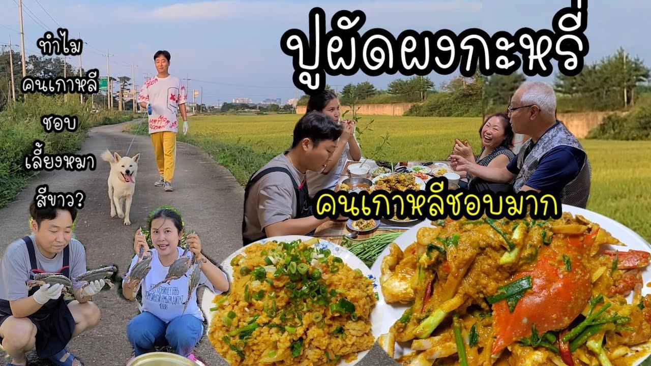 EP.408 |ทำปูผัดผงกะหรี่ให้ครอบครัวเกาหลีกิน ชอบมากๆ อร่อยหมดเกลี้ยง เดินออกกำลังกายเเถวทุ่งนา