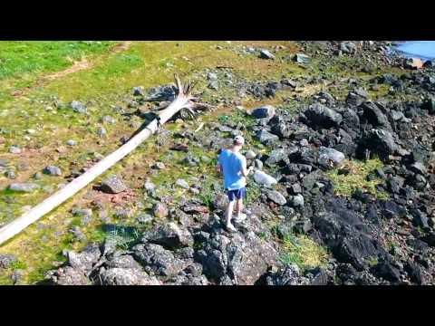Auke Rec, Juneau - DJI Spark
