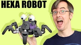 Vincross HEXA Hexapod Robot Unboxing and Review | XRobots