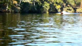 Lumber River 40 Yamaha Falcon