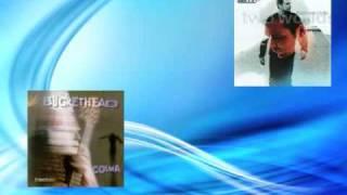 ATB And Buckethead Enigmatic Whitewash