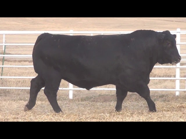 Express Ranches Lot 64