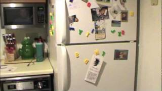 How To Fix Your Fridgidaire Refrigerator (if the compressor won